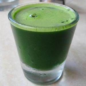 wheatgrass_shotc46a80